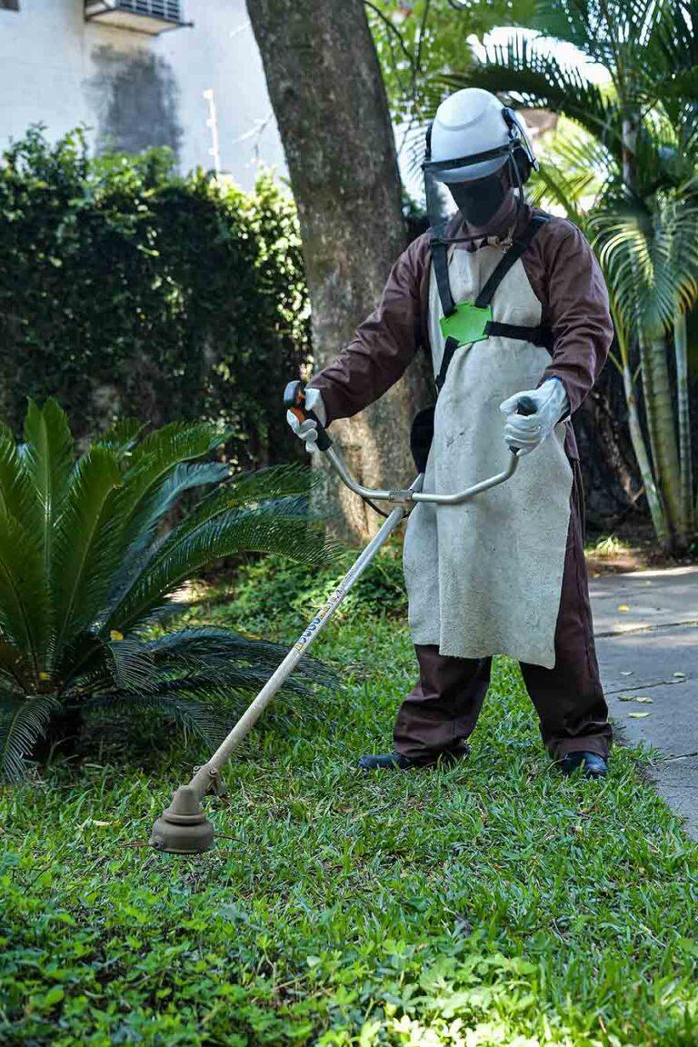 Serviço de Áreas verdes e Jardinagem